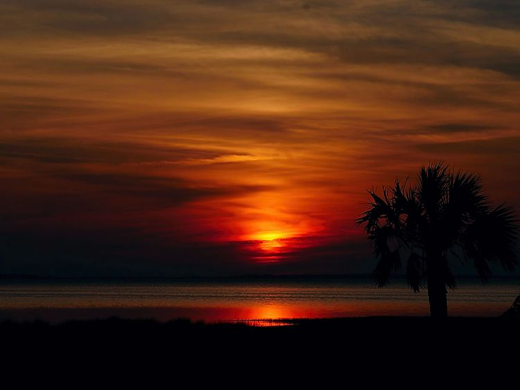 Amazing sunset photo over St. Joe Bay in Gulf County Florida